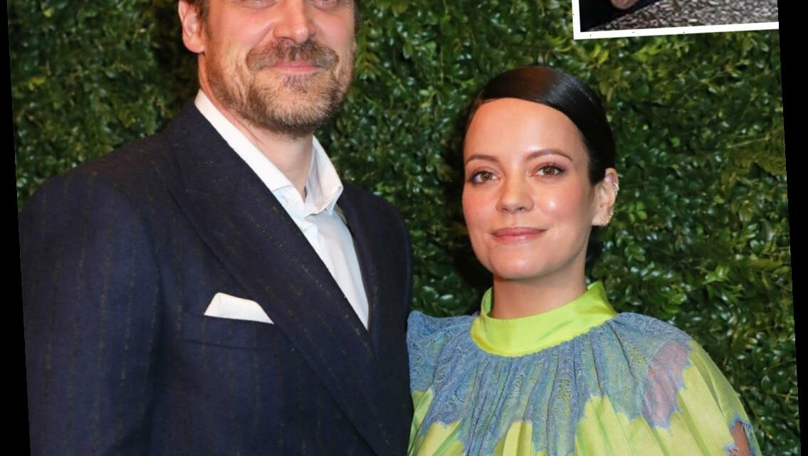 David Harbour and Lily Allen Get Marriage License in Las Vegas