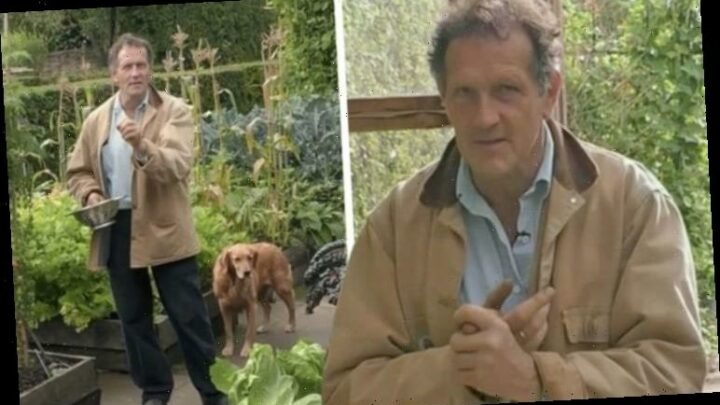 Monty Don speaks out on Gardeners' World mishap which left him 'extremely disappointed'