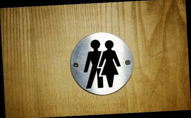 Government will ensure women have access to female-only lavatories