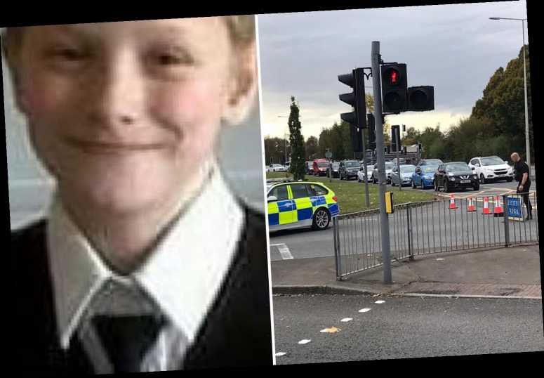 Boy, 16, killed after being 'thrown 10ft in the air' by car while riding bike is named as mum mourns 'beautiful' son