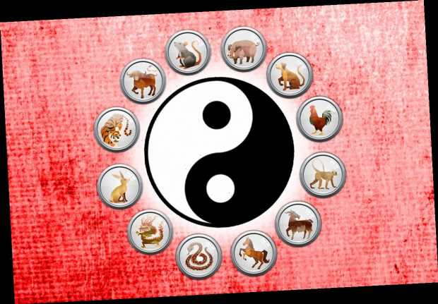 Chinese Astrology: What signs are compatible based on Yin and Yang?
