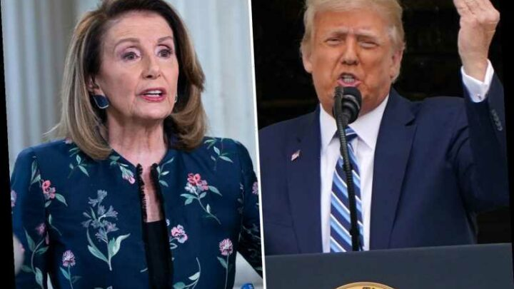 Trump says Pelosi couldn't pass a basic aptitude test as he questions HER mental fitness