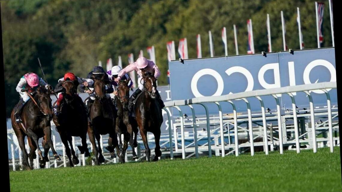 Champions Day – Ascot: Get £50 in Free Bets When You Bet £10 on the 13.20 Saturday
