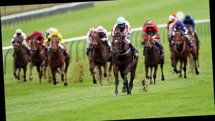 Antepost racing tips: Betting preview for the Cesarewitch meeting at Newmarket this week