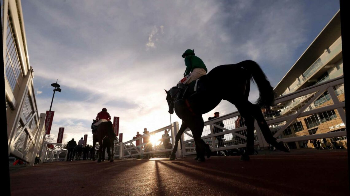 Today's free horse racing tips: Best bets for Saturday's ITV racing at Cheltenham and Doncaster