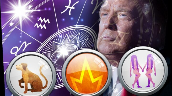 Gemini Fire Dog: What does Donald Trump's Chinese Zodiac Sign mean?