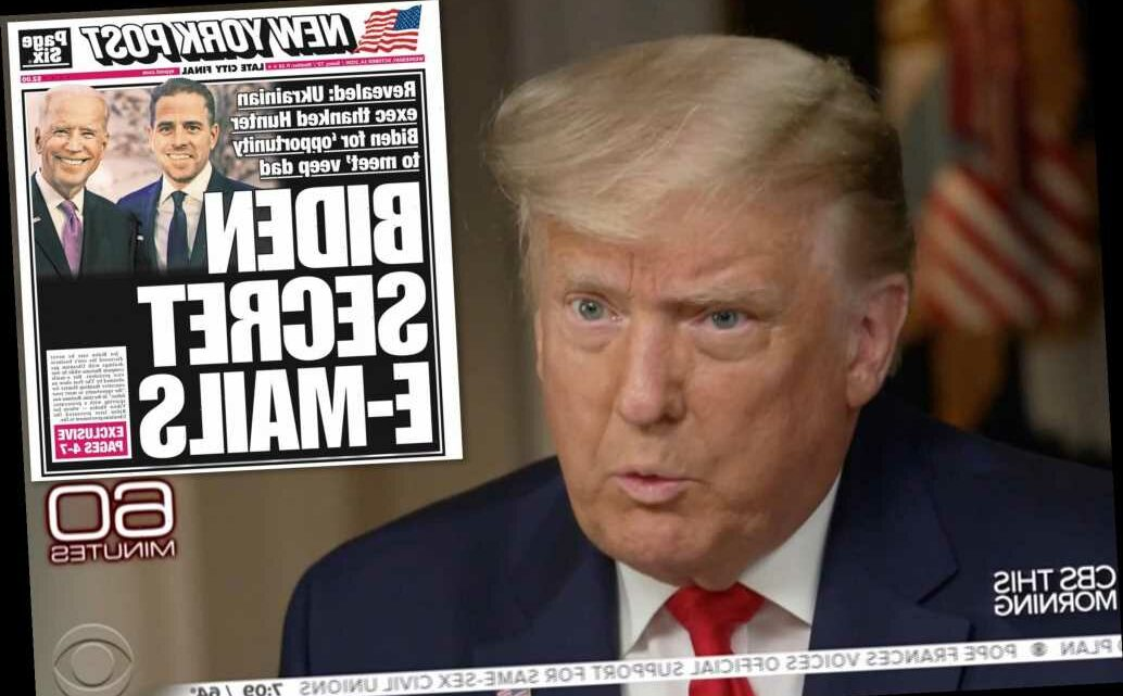 Trump tells Lesley Stahl she's 'like big tech' for defending Biden