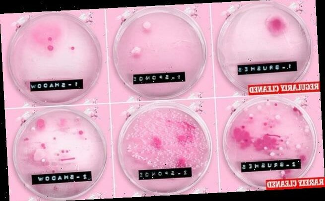 Microbiologist reveals the risks of bacteria lurking on make-up