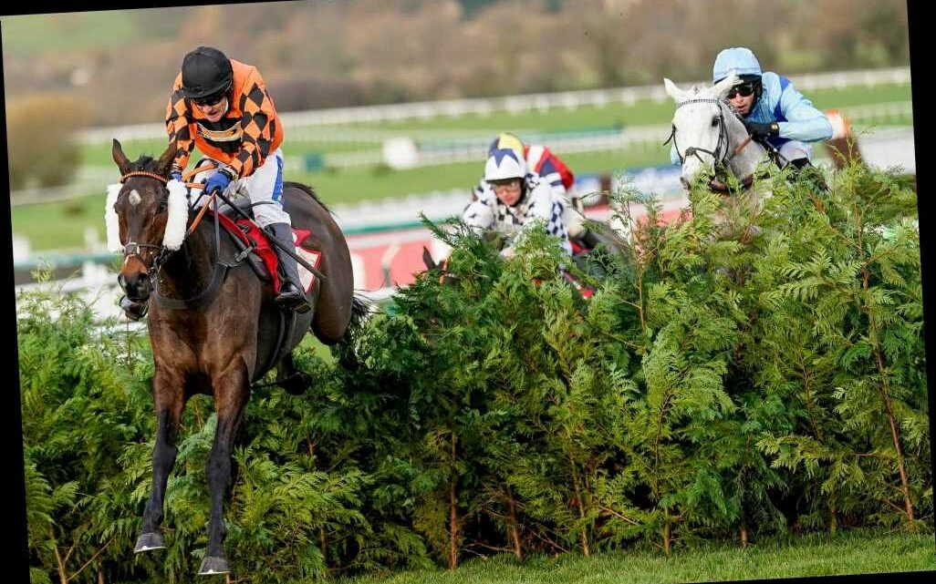 Kingswell Theatre shock 22-1 winner of Cross Country as Tiger Roll and Easysland both stuffed at Cheltenham