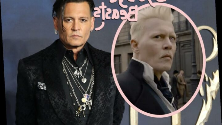 Johnny Depp FIRED From Fantastic Beasts After Losing Libel Suit!