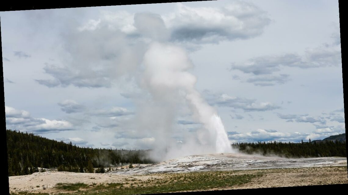 Yellowstone visitor banned for cooking chickens in thermal hot spring
