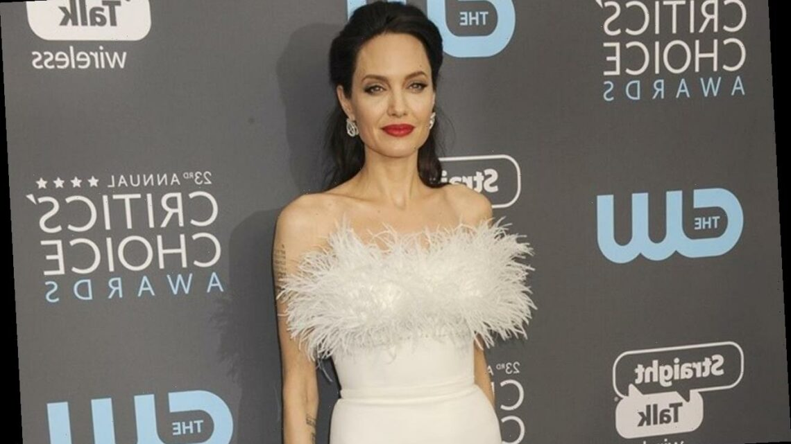 Angelina Jolie to Direct True-Story Movie 'Unreasonable Behavior'