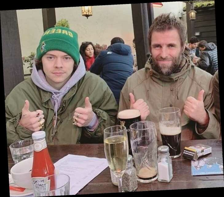 Liam Gallagher & Harry Styles are all smiles as they share a pint at the pub