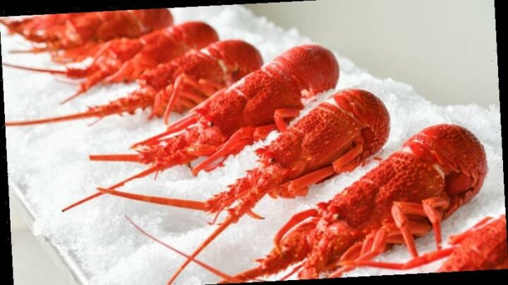 Seafood cheaper but staples will cost more this Christmas