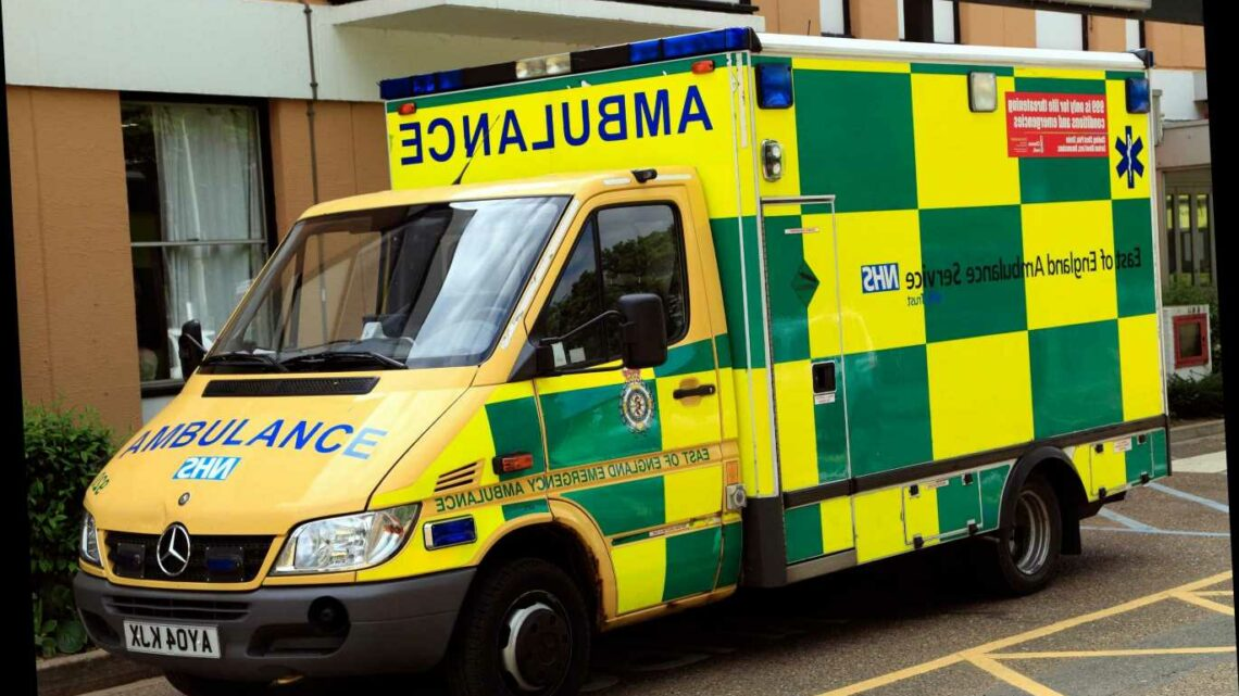 Ambulances called to the same home more than 5,700 TIMES in one year as stretched NHS bombarded by time-wasters