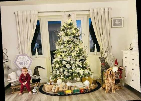 Mrs Hinch spent TWO DAYS decorating her Christmas tree – and it looks incredible