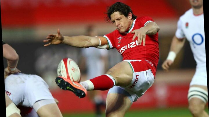 Wales vs Italy rugby FREE: TV channel, Live stream, kick-off time and team news for TODAY'S Autumn Nations Cup match
