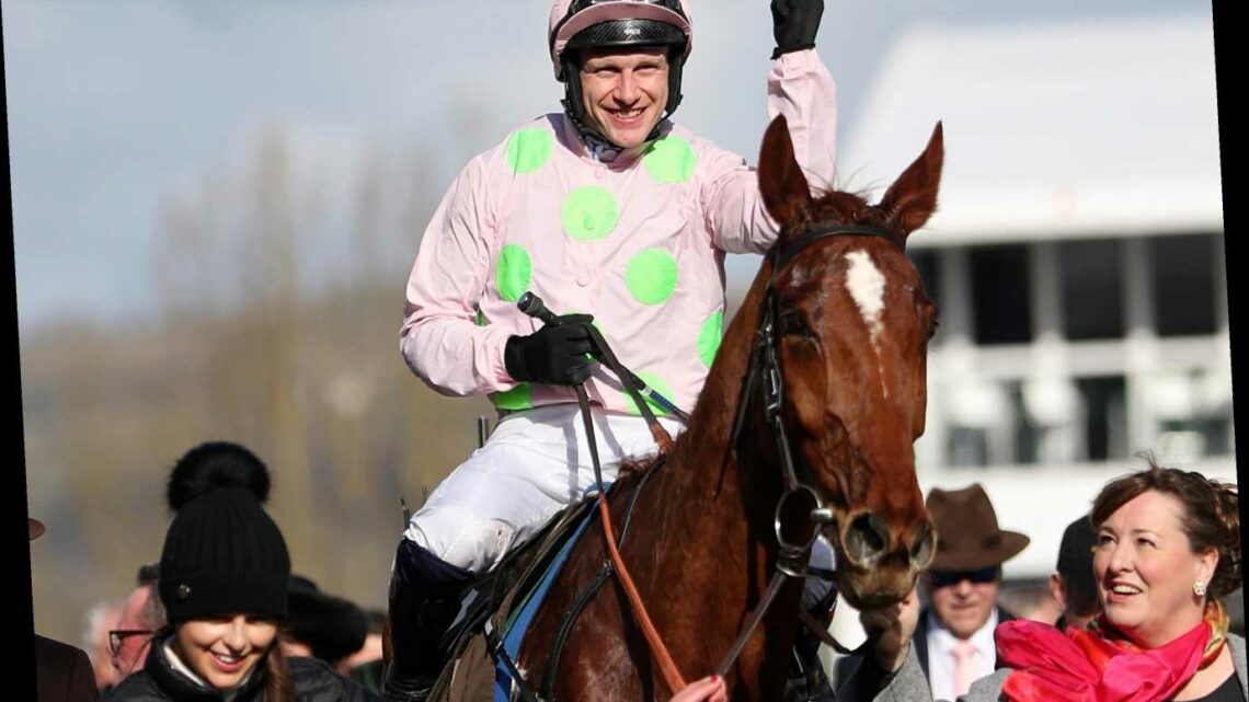 ITV Racing schedule, tips and ultimate guide to today's Leopardstown and Newbury action brought to you by Templegate