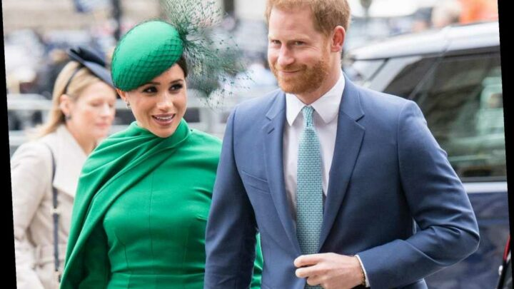 Prince Harry Was Mistaken for a Christmas Tree Salesman and We Love That for Him