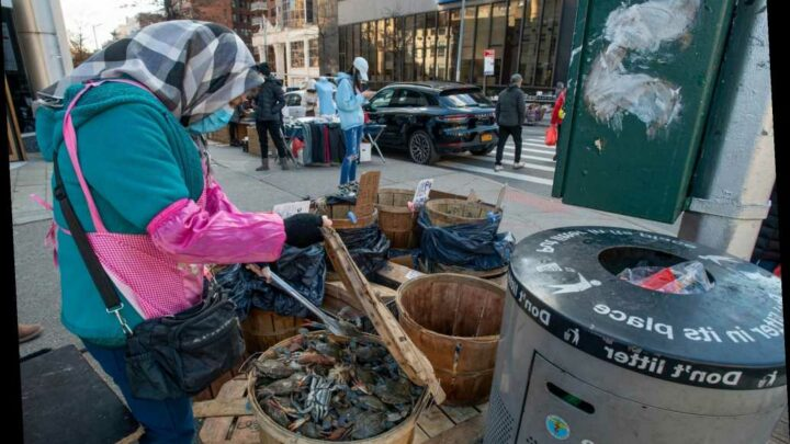Mayhem in the streets: Illegal vendors are overtaking NYC