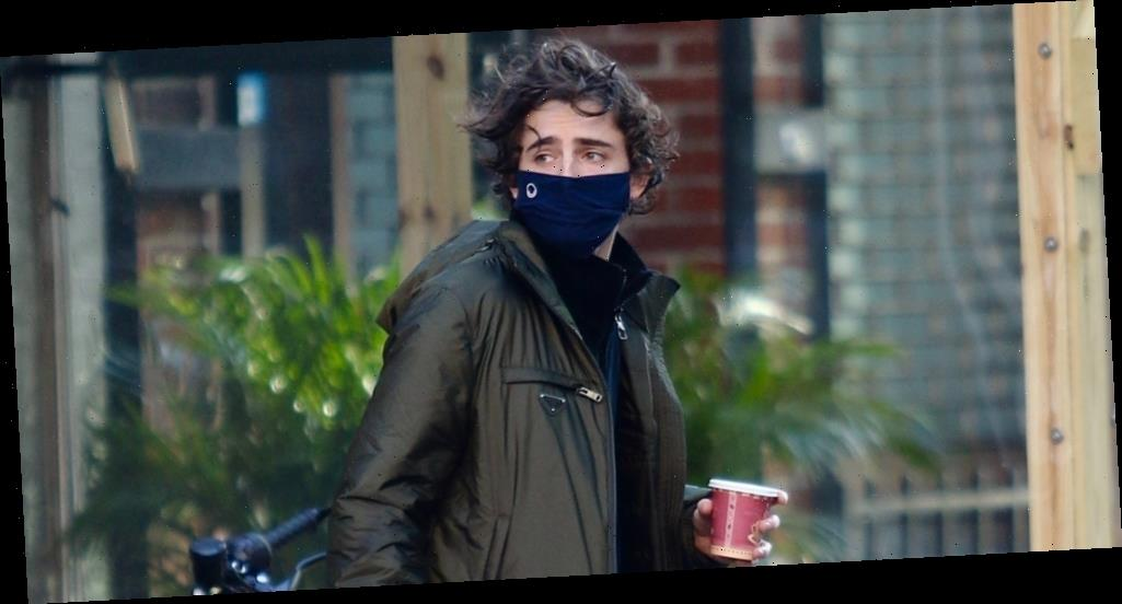 Timothee Chalamet Goes on a Breakfast Run in NYC After 'SNL' Gig