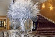 Claridge's Keeps the Faith and Hoists Its Annual Christmas Tree