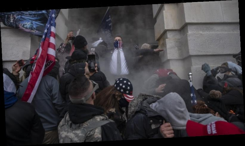 Capitol siege was planned online. Trump supporters now planning the next one