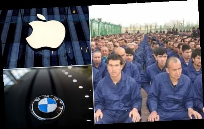Brands including Apple and BMW accused of using  Chinese forced labour