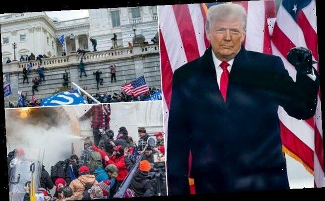 Trump retains Republican support even after MAGA riot