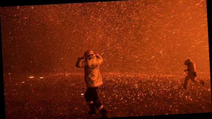 From bushfires to COVID-19, an exhibition of Herald photographs chronicles an extraordinary year