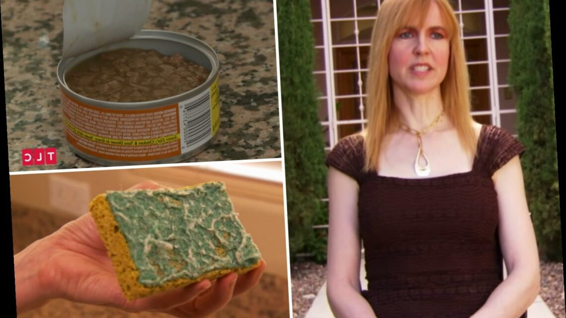 'World's cheapest millionaire' refuses to buy ANYTHING new and eats 43p cat food – despite having £3.9m in the bank