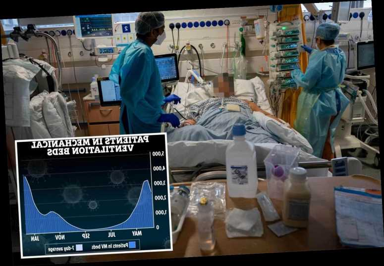 Record 4,000 Brits fighting for lives on ventilators amid fears Covid death rate could grow further