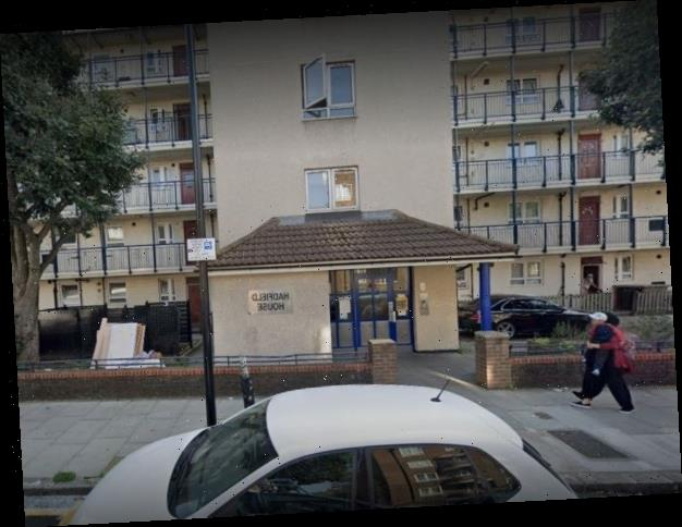 Woman in her 30s dies after being stabbed in East London as man arrested for murder
