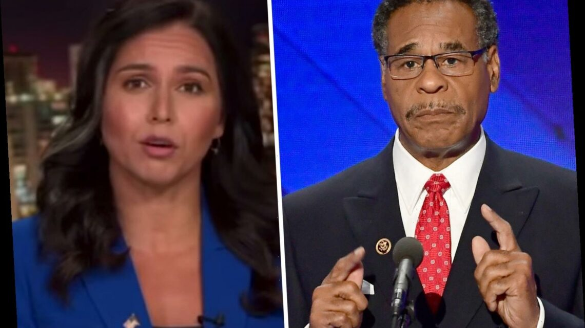'Woke' Dem Rep Cleaver who said 'Amen and awoman' slammed by ex-Dem Congresswoman Tulsi Gabbard