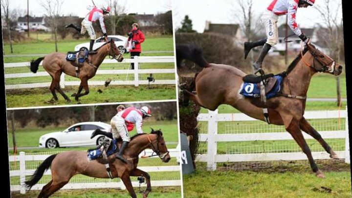 Watch jockey pull off 'most incredible recovery ever' after going totally airborne from horse in race at Naas