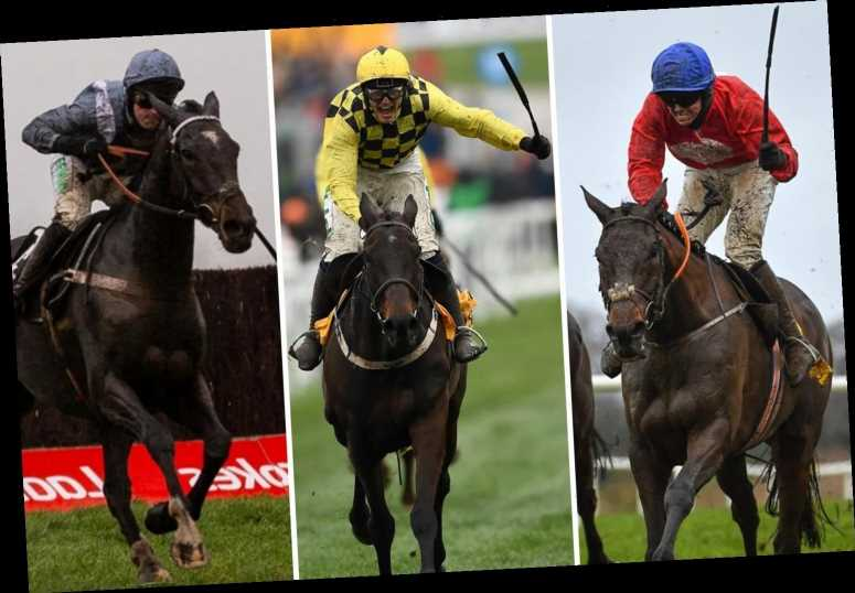 Cheltenham Festival Gold Cup ultimate guide: Best tips, odds and list of all 41 runners ahead of £625,000 showpiece