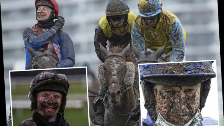 Amazing photos show jockeys battle mud in their eyes in brutal world of winter racing brought on by Storm Christoph