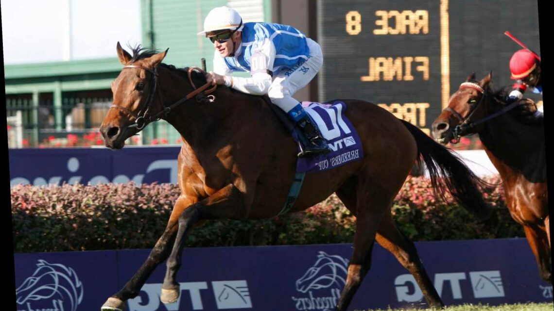 Goldikova dead at 16: All-time great racehorse and three-time Breeders Cup' Mile winner passes away