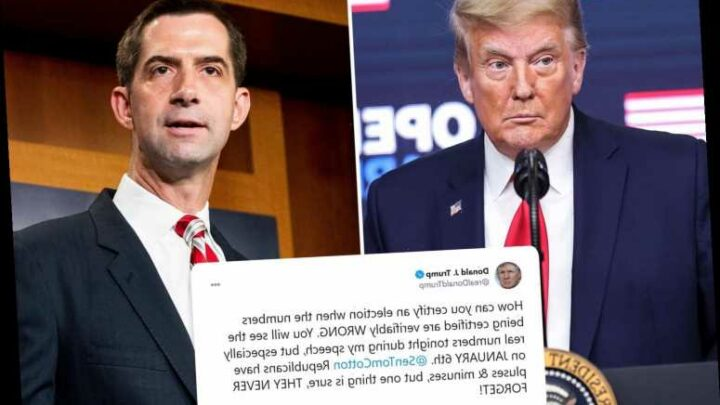 Donald Trump warns Republicans will 'never forget' as he rips ally Tom Cotton for not challenging Biden win