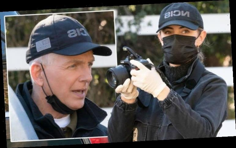 NCIS 2021: Gibbs and team tackle Covid pandemic as series confirms time-jump