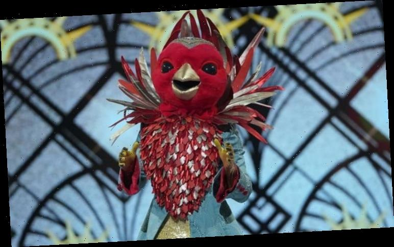 The Masked Singer Robin: Who was Robin?