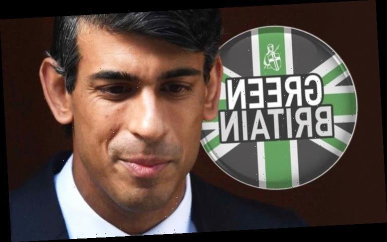 Green Britain: Rishi Sunak urged to scrap VAT tax on green products