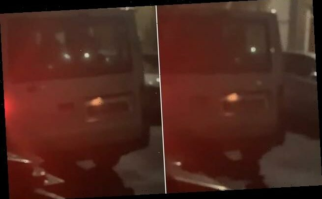 Police issue footage of van after 'shouting woman put into the back'
