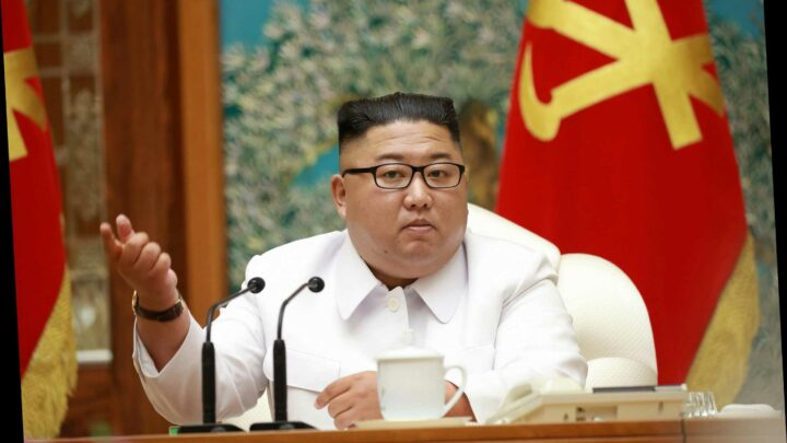Kim Jong-un tries to HACK into Pfizer to steal Covid vaccine data weeks after AstraZeneca attack, spooks claim