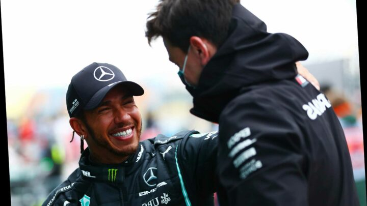 Mercedes chief Toto Wolff insists Lewis Hamilton's new £40m deal was never in doubt – despite F1 ace going unemployed