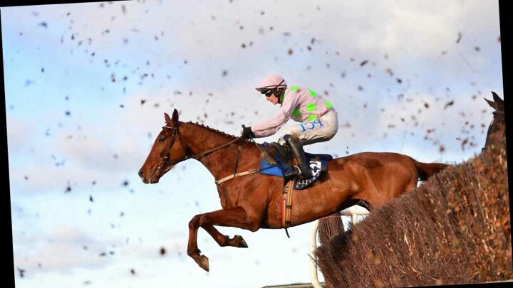 Today's ITV Racing: Schedule, Templegate tips and race times for action from Musseburgh and Leopardstown