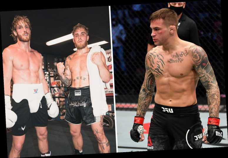 UFC star Dustin Poirier says 'we'll see who is talking' after YouTubers like Jake and Logan Paul fight 'real opponents'