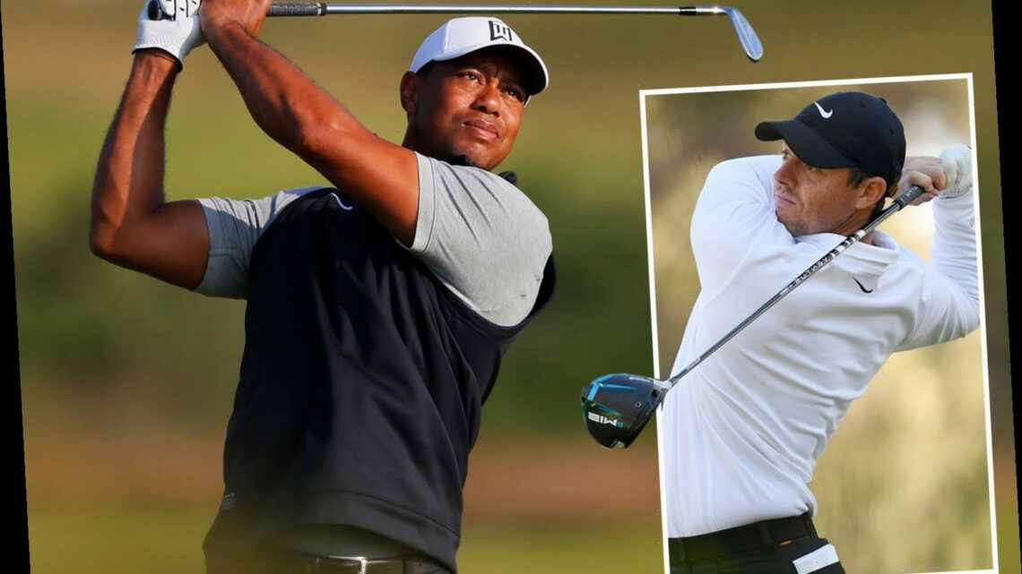 Rory McIlroy doesn't think Tiger Woods will play golf again but 'everyone should be grateful he's alive'