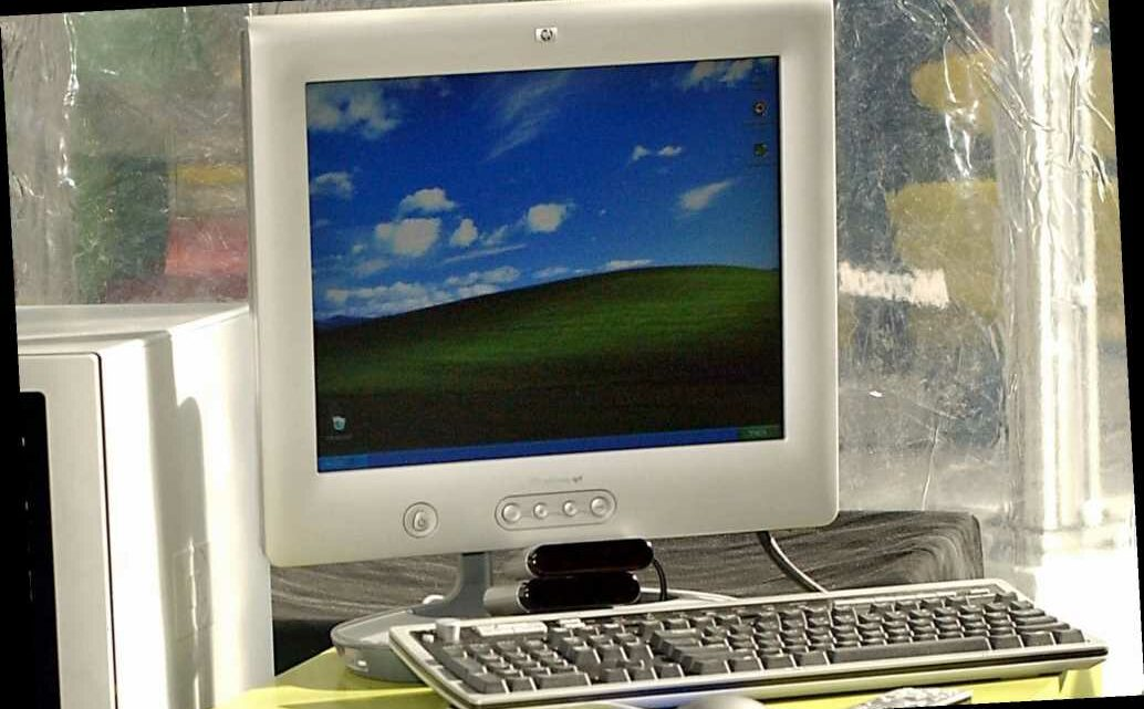 Man finds exact location of infamous Windows XP background