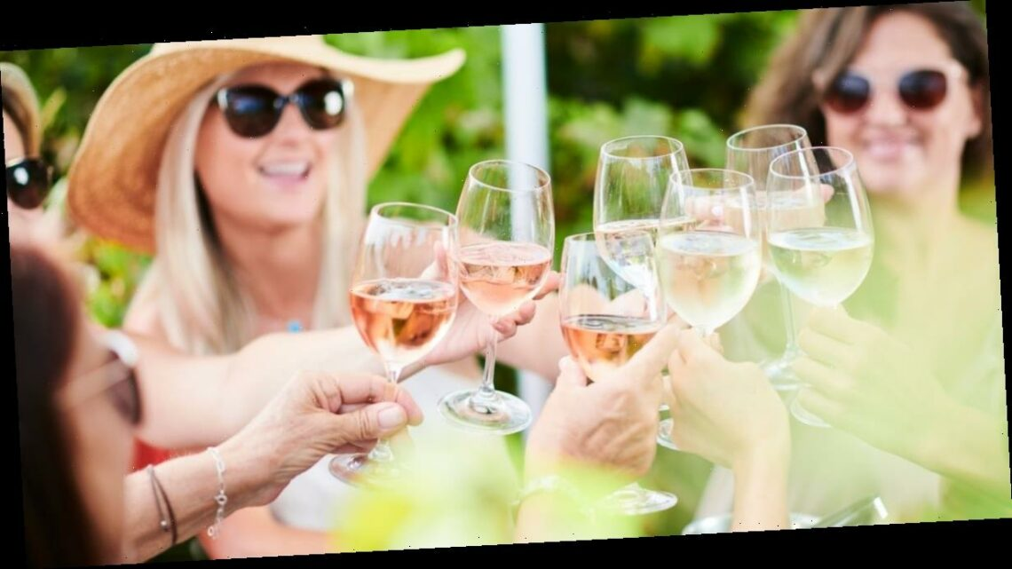 Aldi launch 17 new rosé wines just in time for meeting in groups outdoors
